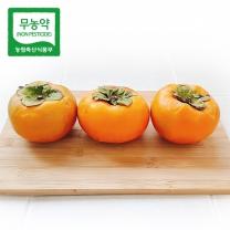 [가락24] 친환경 무농약 단감 10kg / 60내(170~199g)/시크릿