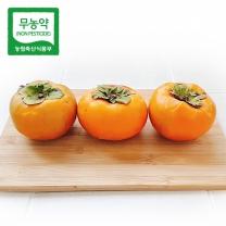 [가락24] 친환경 무농약 단감 10kg / 50내(200~220g)/시크릿