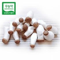 [가락24] 친환경 무농약 볶음새송이버섯 2kg/시크릿