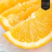 [가락24]칠레산 네이블 오렌지 10입 2.3kg내외(개당 220g~230내외)/이화