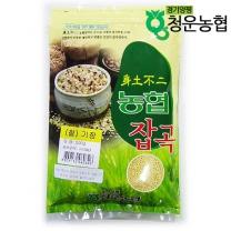 [물맑은양평 청운농협](찰)기장500g