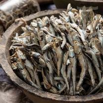 [바다원]햇대멸(다시,국물용멸치) 1.5kg 원물박스