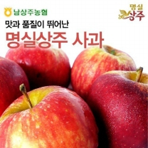 [1월15일출고][남상주농협/산지직송] 명실상주 사과 5kg (16내)