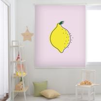 레몬-핑크 롤스크린 (R1286)