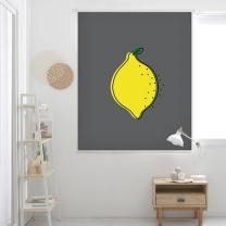 레몬-다크그레이 롤스크린 (R1289)