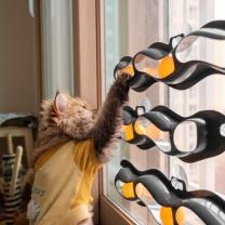 [바보사랑]냥캣 트랙볼 고양이 셀프 장난감