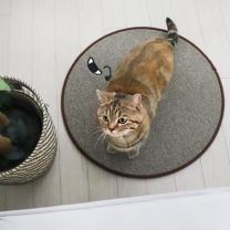 [바보사랑]스크래쳐용 고양이 소환 러그 Brown