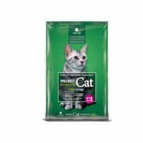 프로베스트 캣 2kg 고양이사료