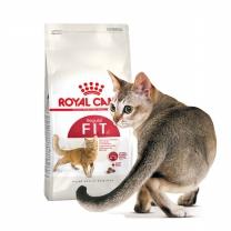 로얄캐닌 피트 4kg 휘트 체형유지를 돕는 고양이사료