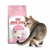 로얄캐닌 키튼 4kg 면역력강화를 돕는 어린고양이사료