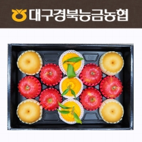 [대구경북능금농협/산지직송] 사과(3입)+배(3입)+한라봉(3입) 혼합(실속) 5kg