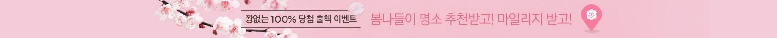 3월 벚꽃따라 출석체크