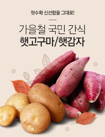 가을철 국민 간식(햇밤/햇고구마)